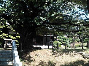 真覚寺・高宰神社