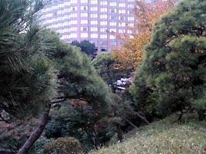 椿山荘庭園