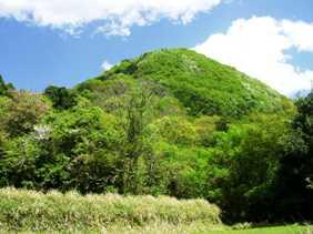 写真I-1:出雲大神宮の御神体山の御蔭山。