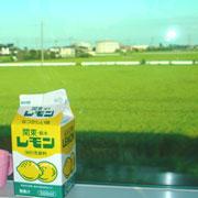 レモン牛乳と田んぼ