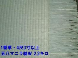 http://www5e.biglobe.ne.jp/~m-tatami/kumamoto_tenichi4.jpg