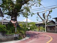 東海道 岩淵